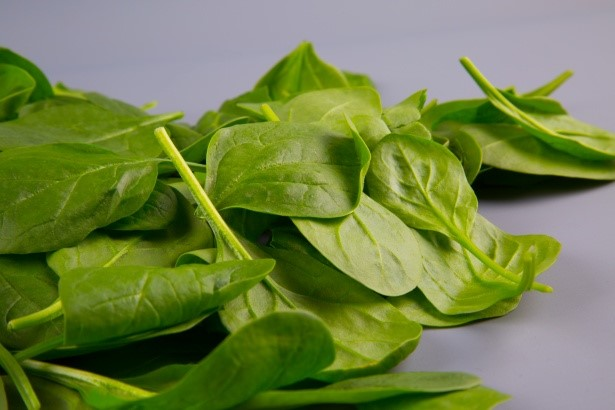 spinach-leaves-1461774443gLy